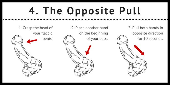 penisul când este erect este rotit spre stânga crescând în penisul de apă