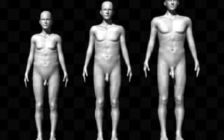 penisuri masculine pentru bărbați penisul uneori nu crește