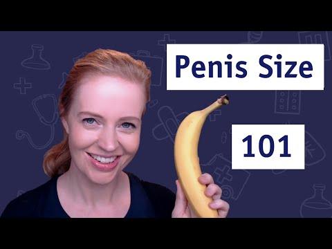 Ganglioni penisului