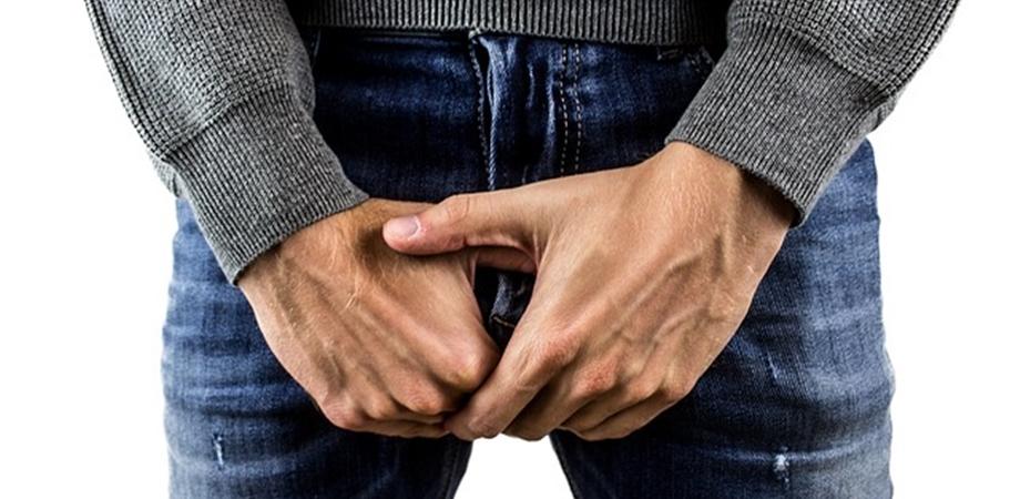 în timpul unei erecții  testiculele nu sunt