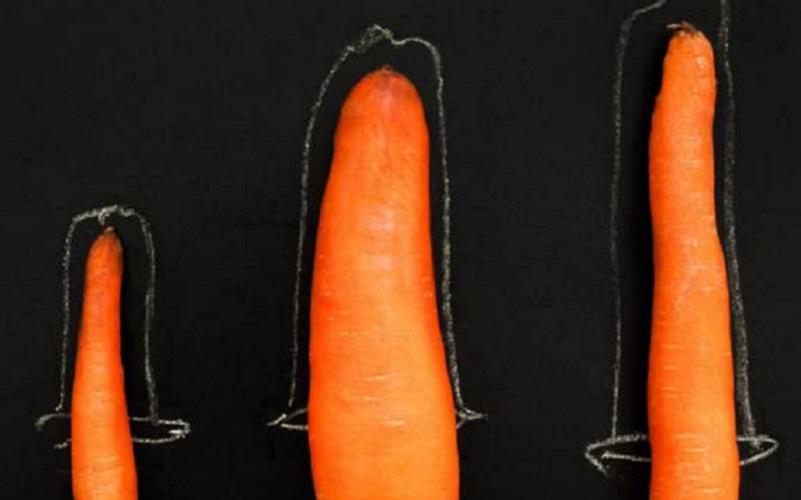 penisului și dimensiunea acestuia tratament eficient de erecție