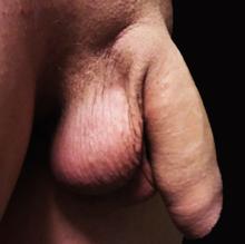 penis de lungime medie erect