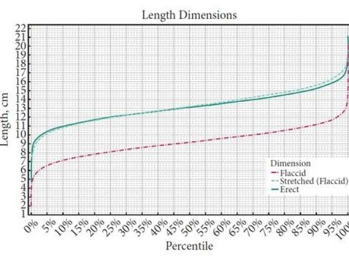 poziții cu o dimensiune medie a penisului femeie tânără și penis mare