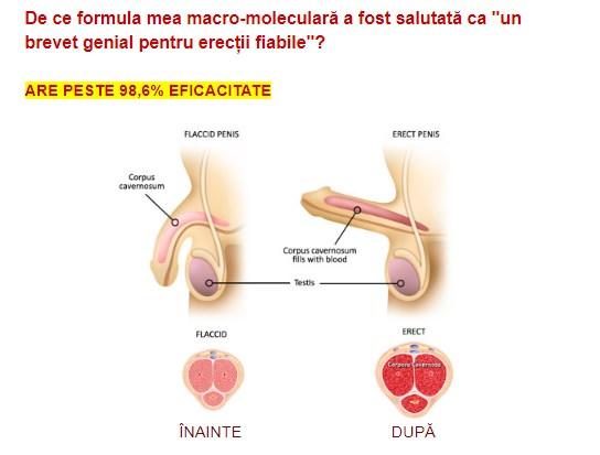 abstinență prelungită erecție slabă slăbirea prostatitei de erecție