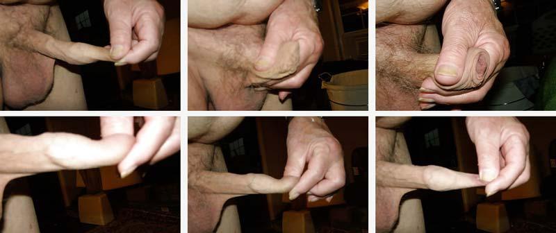 de unde provine penisul
