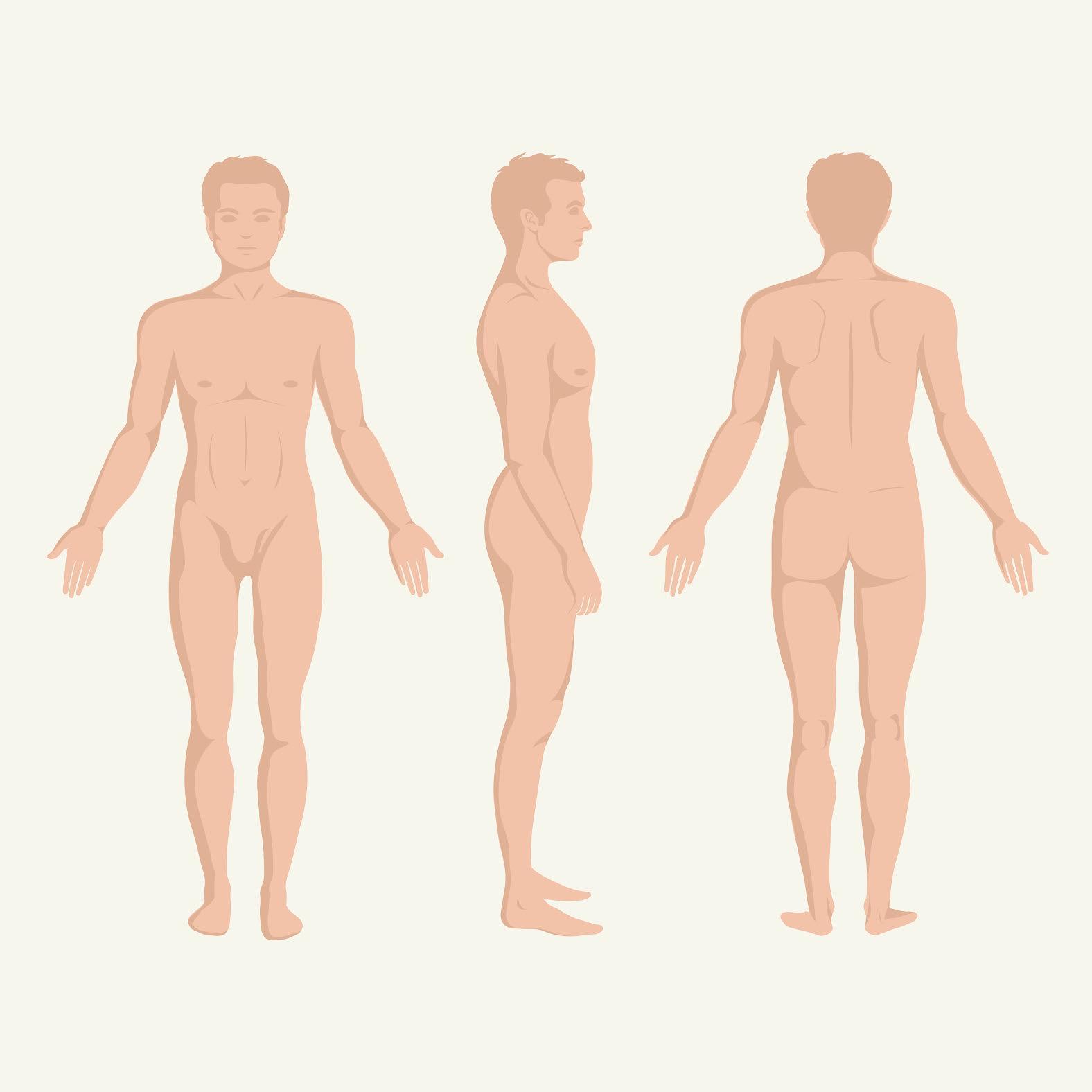 numărul de erecții cum să consolidați exercițiile de erecție
