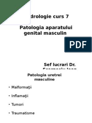în timpul unei erecții penisul este moale masaj de erectie pentru barbati