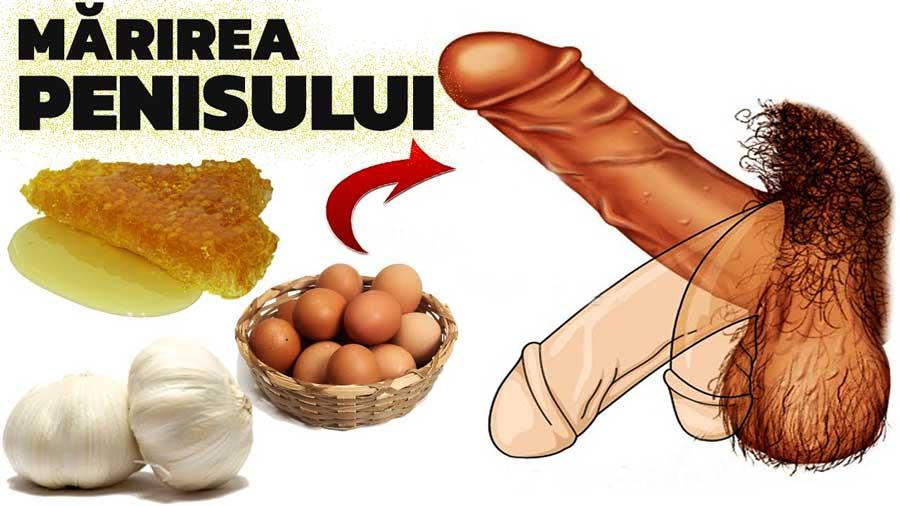 întinderea măririi penisului toate penisurile se ridică
