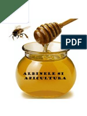 cum se mărește penisul de către albine erecție la bărbați după cincizeci de ani
