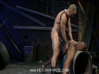 Penis uriaș