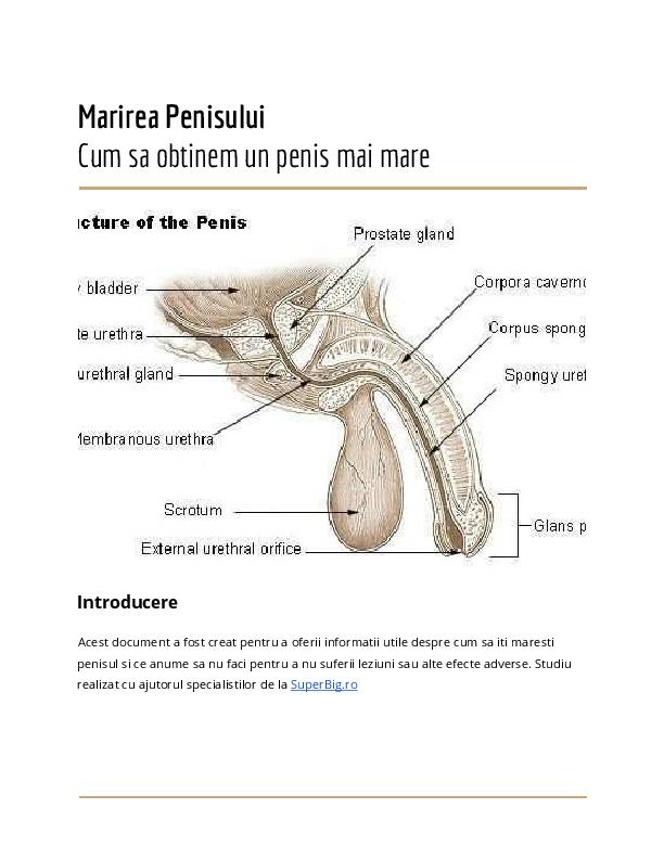 ce să faci că penisul a crescut din ceea ce bărbații pierd erecția